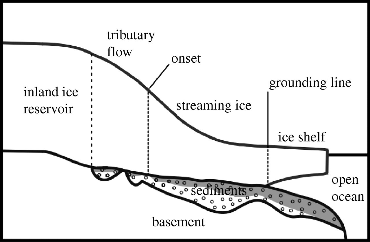 The environment and evolution of the West Antarctic ice