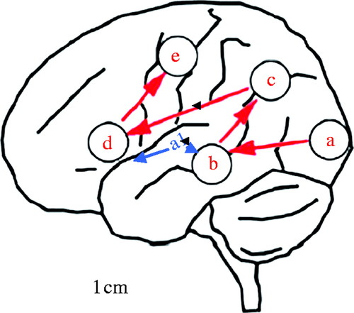 The processing of audio-visual speech: empirical and