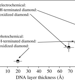 download figure  [ 1280 x 875 Pixel ]