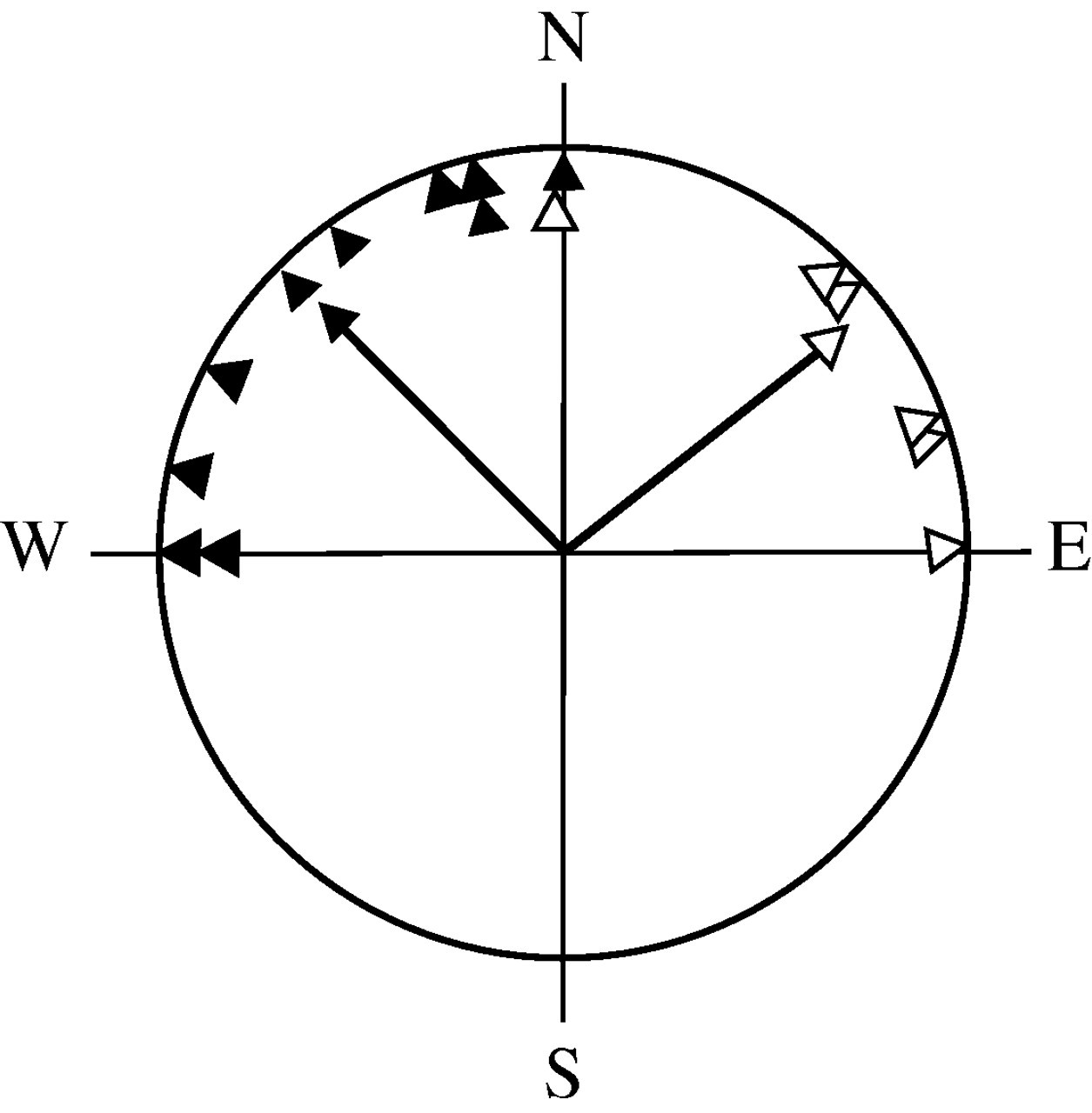 Differential Effects Of Magnetic Pulses On The Orientation