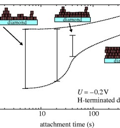 download figure  [ 1280 x 882 Pixel ]