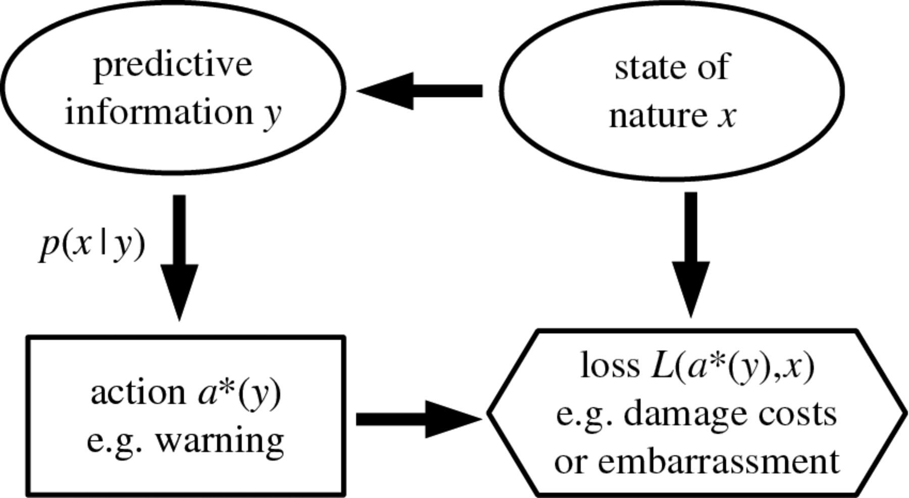 On The Use Of Bayesian Decision Theory For Issuing Natural
