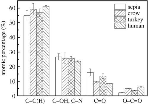 Elucidation of the hierarchical structure of natural