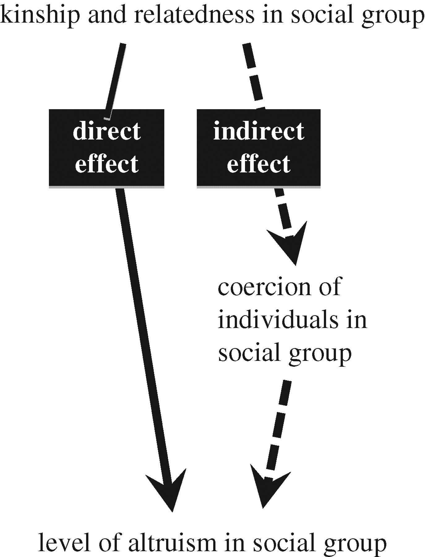 The evolution of extreme altruism and inequality in insect