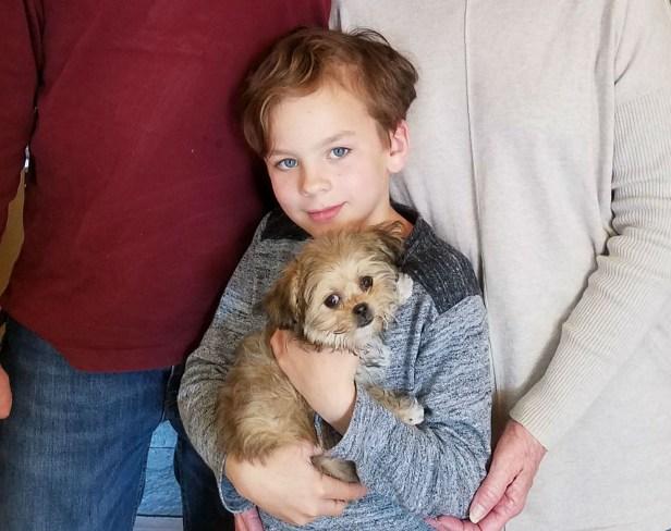 Cassidy-Phoebe_Mi-ki_Puppy-new-family-2018