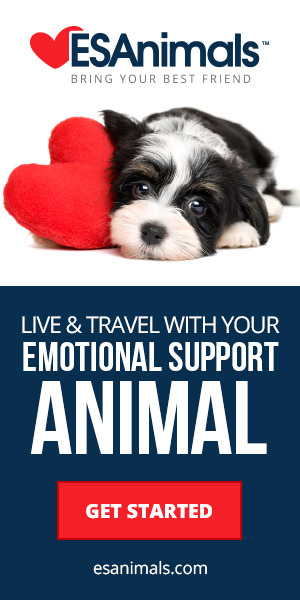 travel-with-your-Mi-ki_Dog_emotional-support-animal