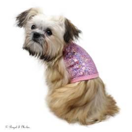 Royal-T_Mi-kis_Isabelle_Mi-ki_Puppy_the_Dog_Squad_sequin_dog_tank_20190213-2c