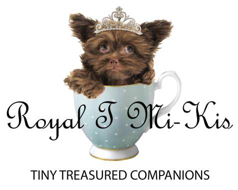Royal T Mi-Kis Logo Tiny Treasured Companios