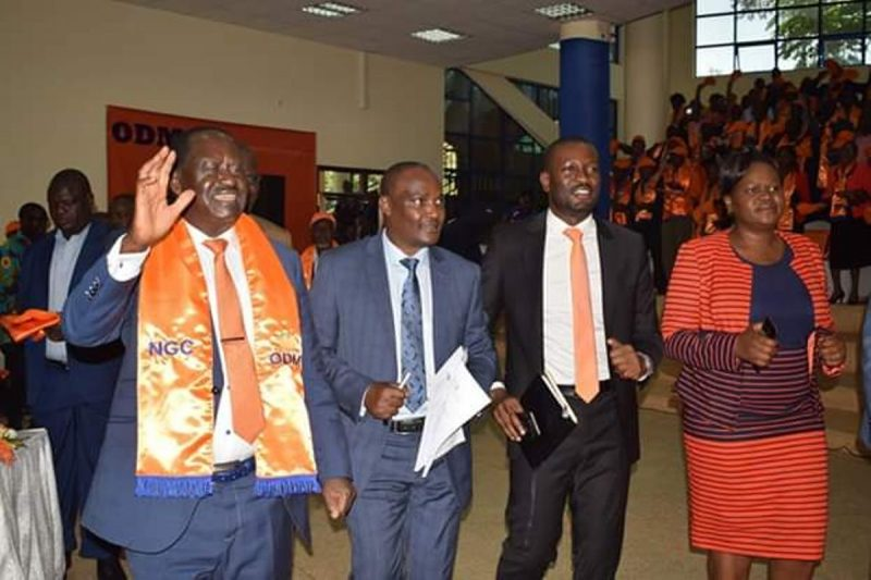 List of ODM Governors 2020