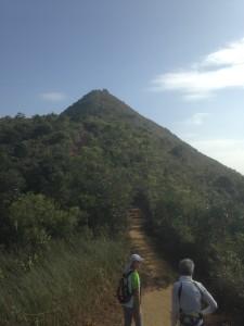 Hike along the ridge to Needle Hilll