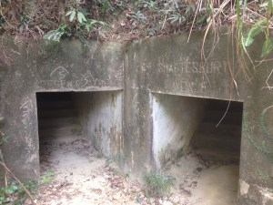 WWII Bunkers