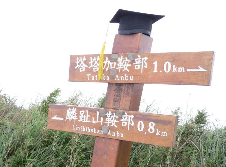 塔塔加是我花最多時間跑野外的地方位於玉山國家公園