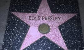 Elvis Presley Hollywood Star
