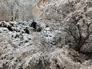 Roy Orbison Jr in The Snow!