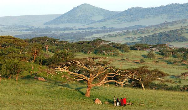 08safari-serengeti-600