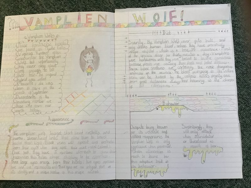 Take a look at some of our amazing non-chronological reports produced by our Year Six pupils.