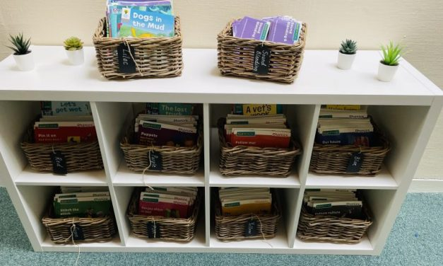 Our school library areas look simply wonderful. Carefully chosen texts presented beautifully by our librarians.