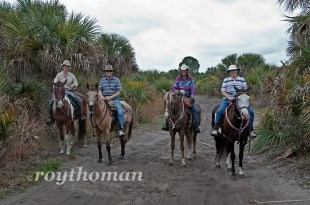 Trail Ride at Canaveral Groves 04-12-2013