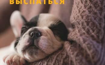 хорошо тебе выспаться