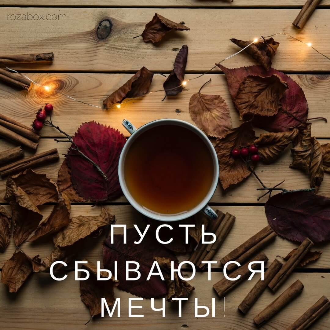 Открытки для хорошего настроения - RozaBox.com