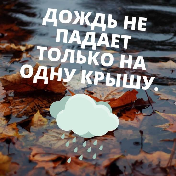 высказывания про дождь