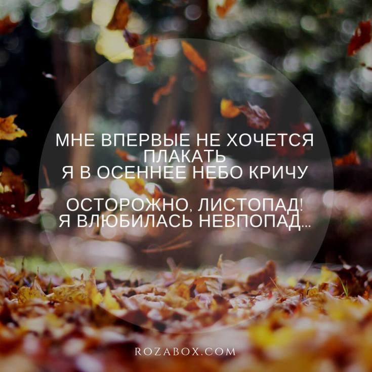 лучшие статусы красивой осени