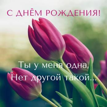 тюльпаны для женщины открытка