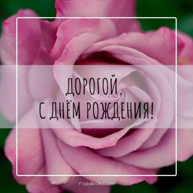 цветы на картинке для мужа