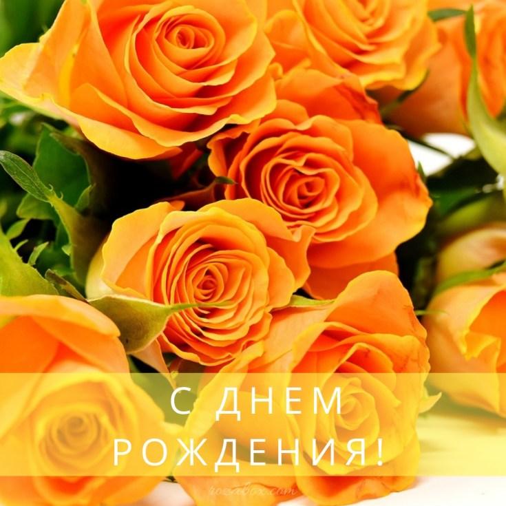 розы для любимой на открытке