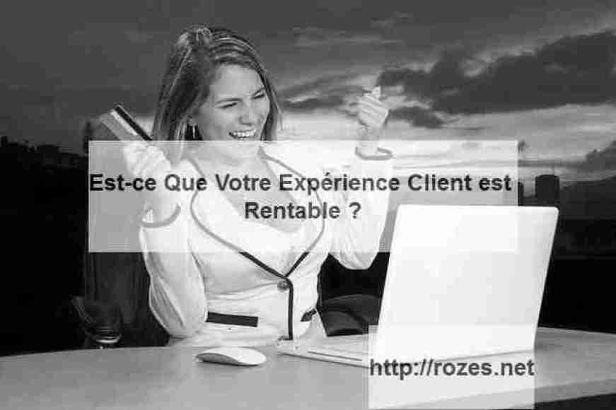 Rentabilité Expérience Client : McKinsey dévoile le lien entre la Relation Client et le CA supplémentaire généré