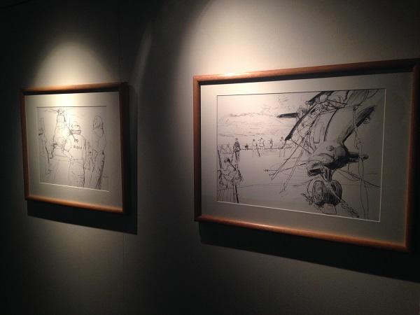 Linda Kitson's Falkland's drawings.