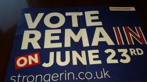 Vote Remain 002