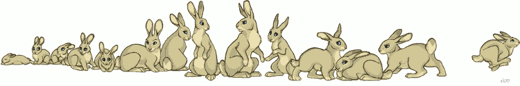 a_bunch_of_bunnies_by_lyosha