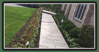 Planting Design Chicago