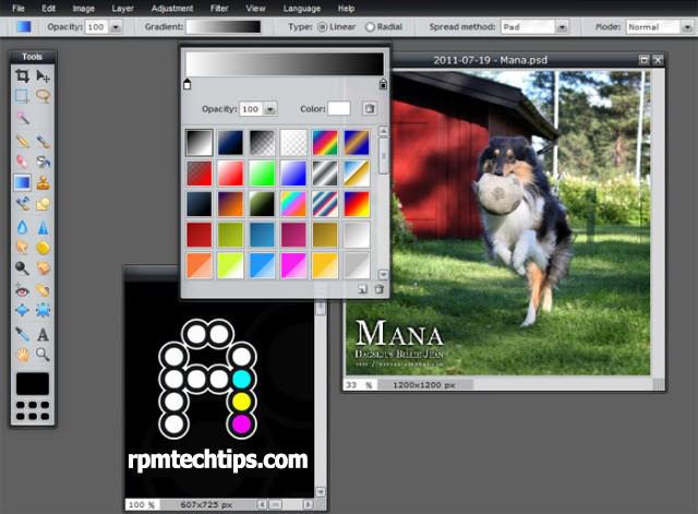 5 Best Free Photoshop Alternatives