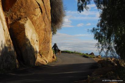 Mt Rubidoux 1-27-2010 DSC_7728 WP