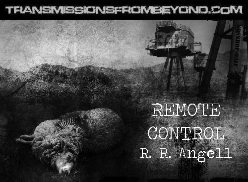 Artwork for Remote Control done by Chris Nurse showing a dead sheep near a gun turret