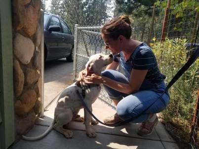 Ash the Lava Fire Pup With Rescue Ranch Foster AliCarman Carico
