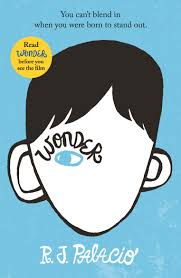 RRKReads book review of Wonder