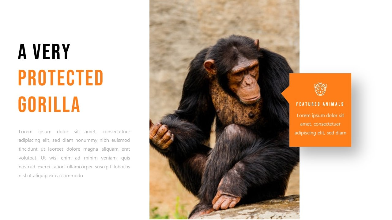 Free Zoo Animal PowerPoint Template