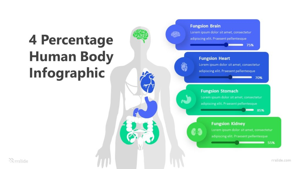 4 Percentage Human Body Infographic Template