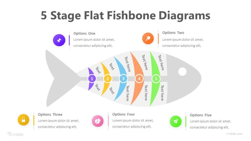 5 Stage Flat Fishbone Diagrams Infographic Template
