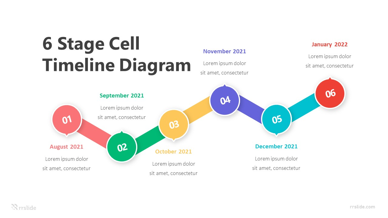 6 Stage Cell Timeline Diagram Infographic Template