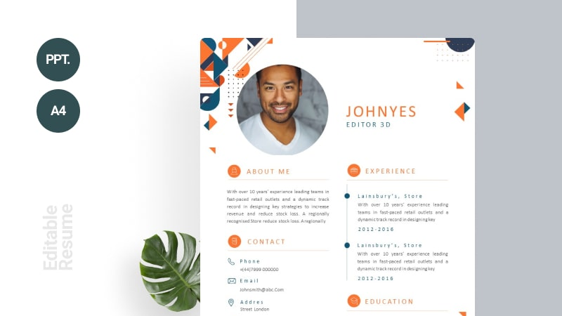 Abstract Minimalist CV Template