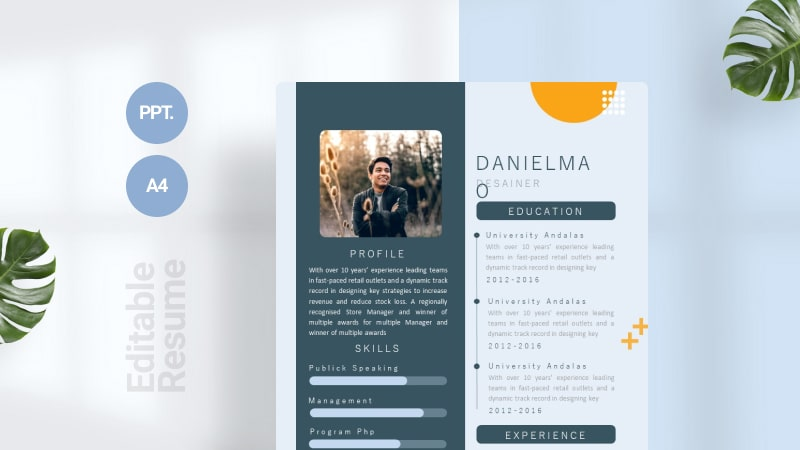 Blue Modern CV Template