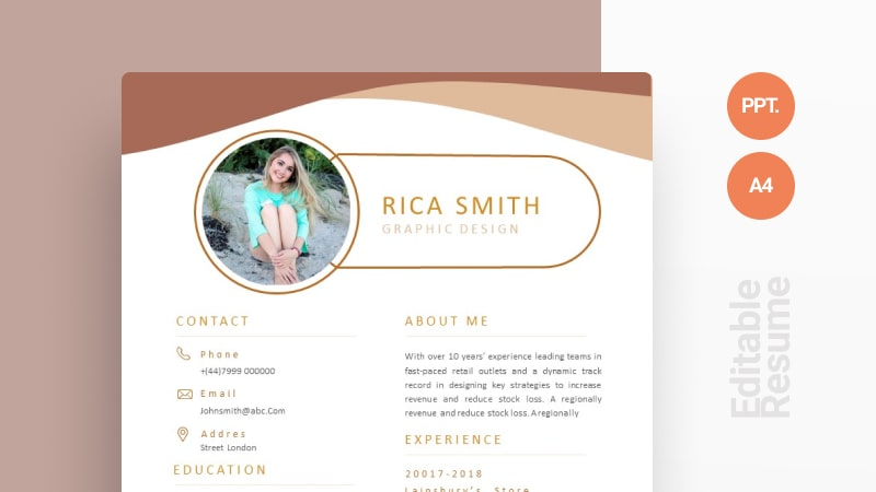 Brown Modern CV Template