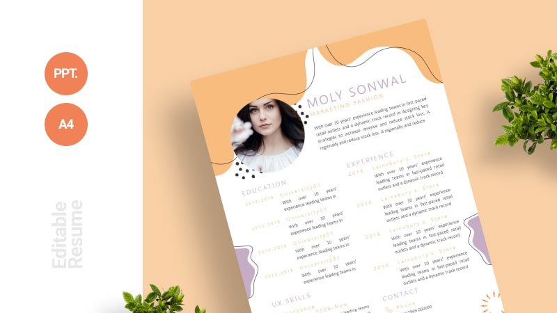 Classic Excited CV Template