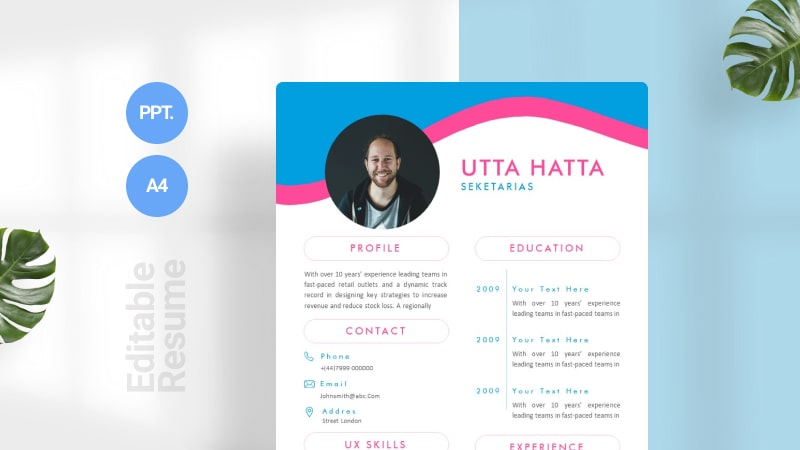 Blue and Pink CV Template