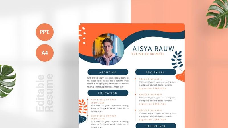 Fresh Color CV Template