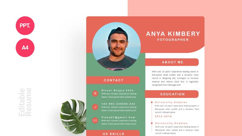 Simple Modern CV Template